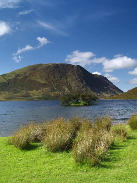 Crummock Water with Grasses