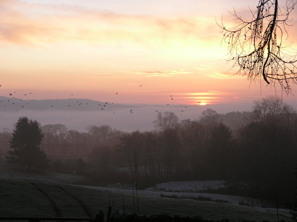 Dawn from Summer Hill with Birds